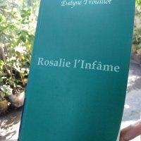 Fiche de lecture du roman ''Rosalie l'infâme'' d' Évelyne Trouillot